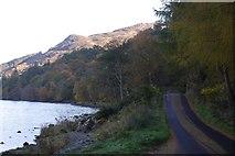 NN6523 : South Loch Earn Road by Richard Webb