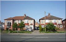 NZ2542 : Houses on Newcastle Road, Crossgate Moor by JThomas