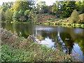 SK3622 : Mere Pond, Calke Abbey by Oliver Mills