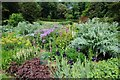 ST5071 : Flowerbed at Tyntesfield by Philip Halling