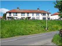 H9639 : Houses in Green Park Avenue, Markethill by Eric Jones