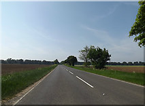 TL9482 : A1066 Thetford Road, Brettenham by Adrian Cable