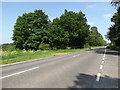 TL9082 : A1066 Thetford Road, Rushford by Adrian Cable