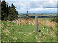 NT8729 : Marker Post on Haddon Hill by Geoff Holland