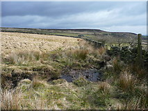 SE0030 : Footpath crossing a stream on Aberdeen Flat, Wadsworth by Humphrey Bolton