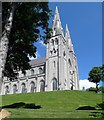 H8745 : The twin steeples of St Patrick's Catholic Cathedral by Eric Jones