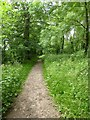 SJ8207 : The Monarch's Way, White Ladies Priory by Philip Halling