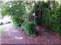 SZ0891 : Bournemouth: footpath B17 from Braidley Road by Chris Downer