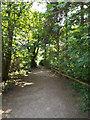 TM1840 : Footpath at Bridge Wood by Adrian Cable