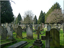 TQ2081 : In Acton Cemetery by Robin Webster