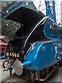 SE5951 : Mallard, York Railway Museum, York, Yorkshire by Christine Matthews