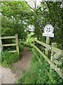 TA0684 : Cleveland Way footpath to Cayton Bay by John S Turner
