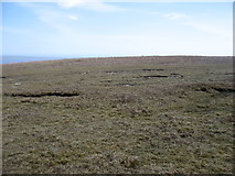 HU3283 : On Roga Field by David Purchase