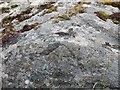 NF7102 : Rivet on rock near Bruairnis, Barra by Becky Williamson