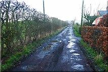 NS4566 : Road, Blackstoun by Richard Webb