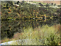 SN9165 : Garreg-ddu Reservoir by David Dixon