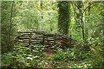 SX9065 : Barrier, Chapel Hill Pleasure Grounds by Derek Harper