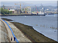 NS3474 : The Kelburn boardwalk by Thomas Nugent
