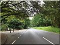 TL9182 : A1066 Thetford Road, Rushford by Geographer