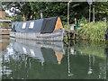 TL3613 : River Lea near Ware, Hertfordshire by Christine Matthews