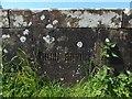 NS3585 : Auchentullich Bridge: inscribed tablet (from 20th century) by Lairich Rig