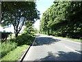 NY3652 : A595 heading north east by JThomas