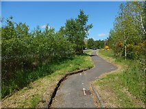 NS3586 : Path following line of the old military road by Lairich Rig