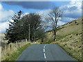SN8774 : Trees on the Road through Elan Valley by David Dixon