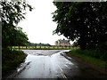 TL9281 : C635 Rushford Road, Rushford by Adrian Cable