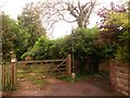 SZ0994 : Moordown: the end of McWilliam Road by Chris Downer