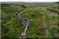 SD9230 : Looking down Red Carr Clough by Chris Heaton