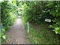 TQ6042 : Home Farm Lane, Tunbridge Wells by Chris Whippet