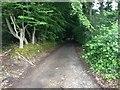 TQ6142 : Home Farm Lane, Tunbridge Wells by Chris Whippet
