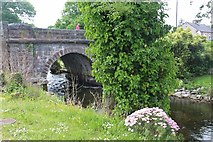M1455 : Bridge over the River Cong by Alan Reid