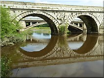 SJ5409 : Arches in Atcham Old Bridge by Philip Halling