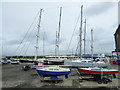 NS2975 : Yachts at James Watt Dock by Thomas Nugent
