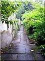 SZ0791 : Westbourne: footpath A10 descends to Prince of Wales Road by Chris Downer