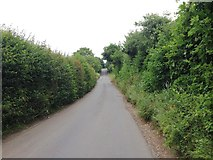 TQ8959 : Ruins Barn Road, near Tunstall by Chris Whippet