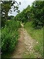 SE1028 : Cowling Lane, Northowram by Humphrey Bolton