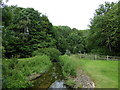 TL1597 : Stream just east of Ferry Meadows Station by Basher Eyre