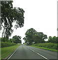 TL5858 : A1304 London Road, Six Mile Bottom by Adrian Cable