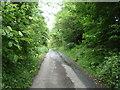 NU0724 : Minor road towards North Charlton by JThomas