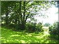 SN0312 : Minwear Church - gate into graveyard by welshbabe