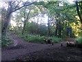 SZ0794 : Talbot Village: footpath N15 meets Slades Lane by Chris Downer