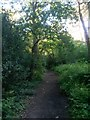 SZ0793 : Talbot Village: footpath N15 heads south by Chris Downer