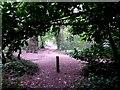 SZ0793 : Talbot Village: footpath N42 arrives onto Slades Lane by Chris Downer