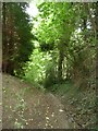 SO0387 : Public bridleway to Bettenewydd by Christine Johnstone