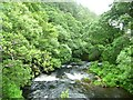 SN9186 : Afon Clywedog alongside Gelli Wood by Christine Johnstone