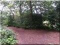 SZ0793 : Talbot Village: footpaths N40 and N41 meet by Chris Downer
