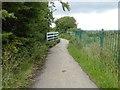 TA1233 : Hornsea Rail Trail #6 by Steve  Fareham
